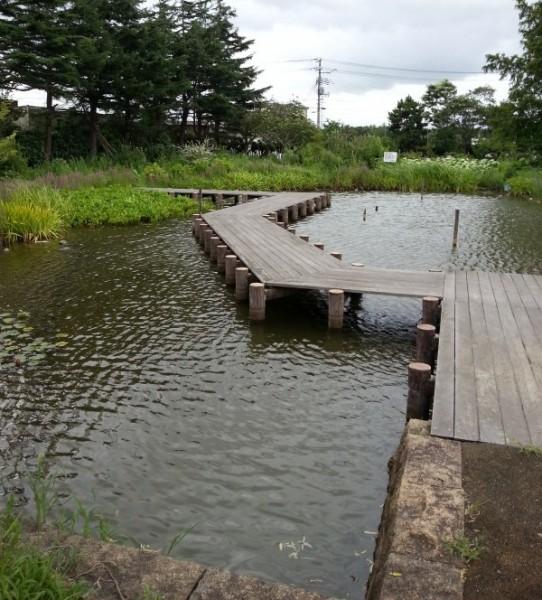 濁川自然生態観察園