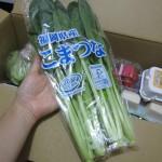 オイシックス小松菜