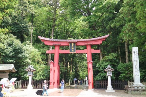 弥彦神社一の鳥居
