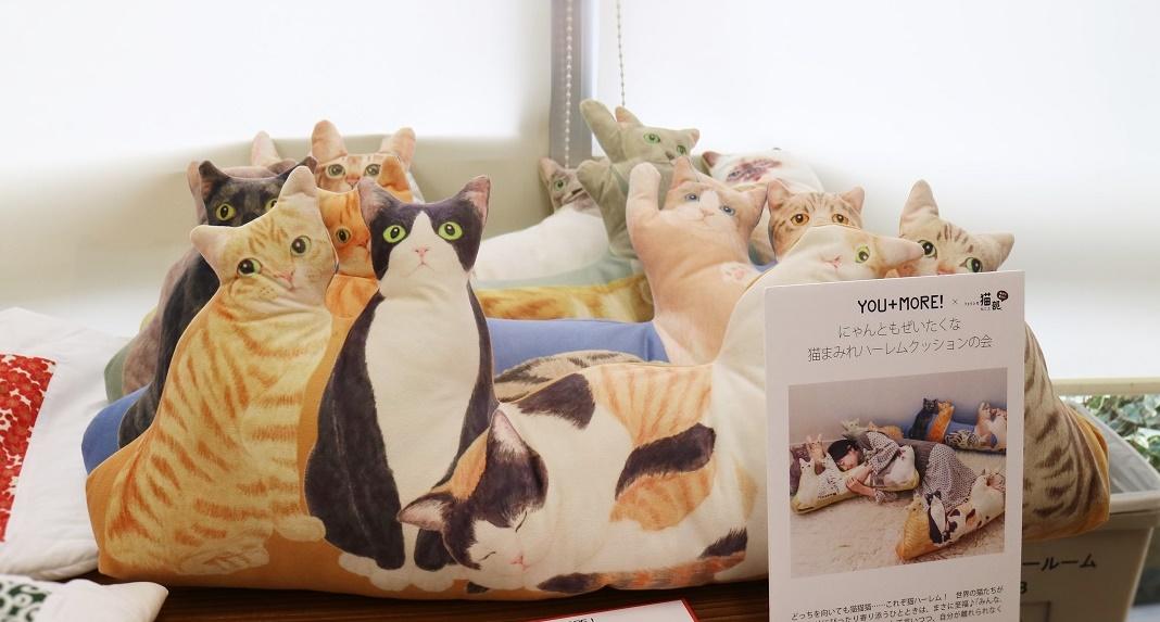 フェリシモ猫まみれハーレムクッション